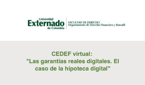 CEDEF-virtual-peque